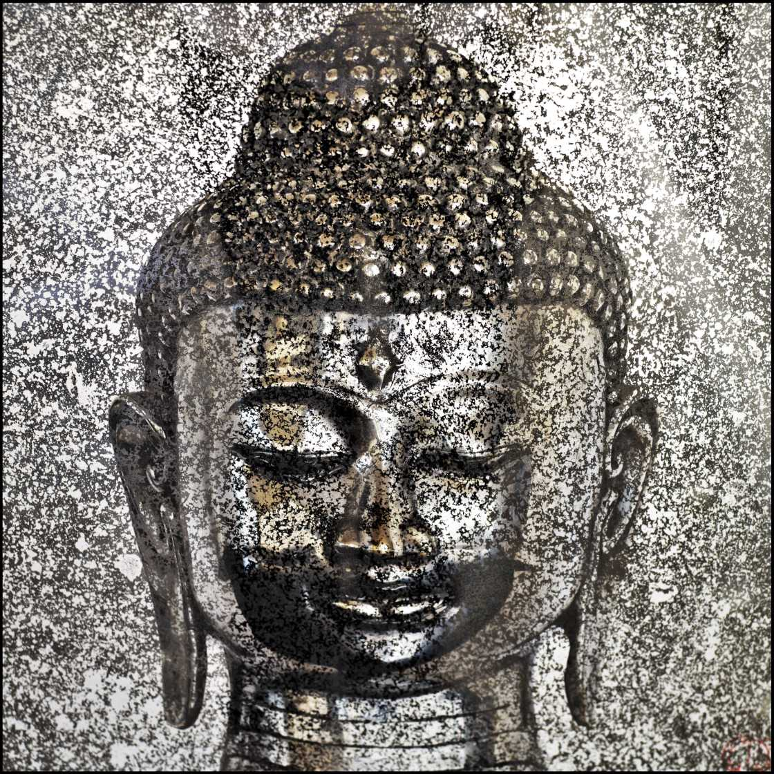 \'Silver Buddha\' Part of the Schuster Ommanney \'American Buddha\' Series